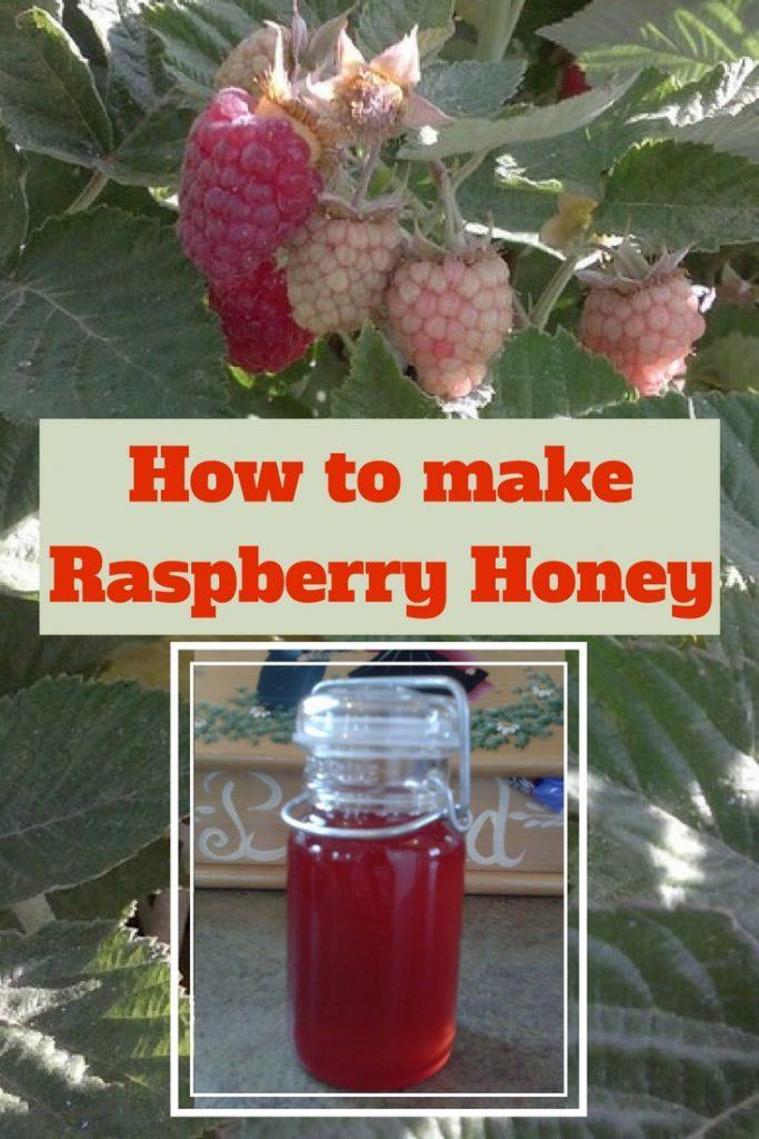 Raspberries and a jar of raspberry honey