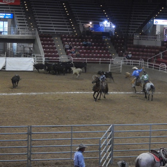 ranch-rodeo-4